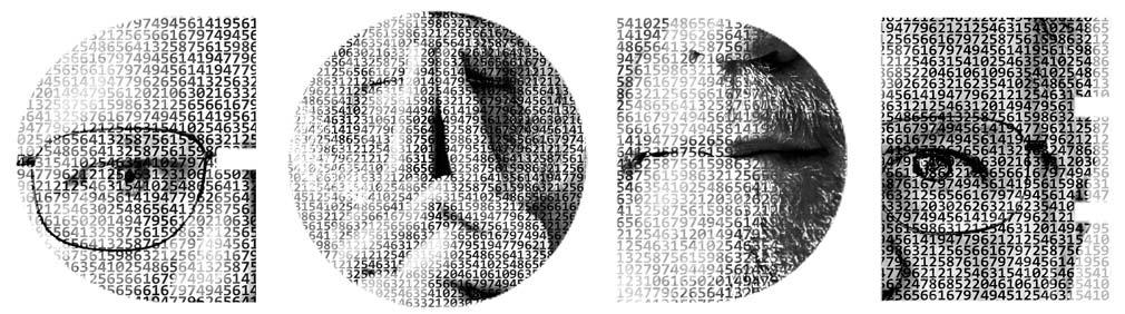 Brad Portrait Code